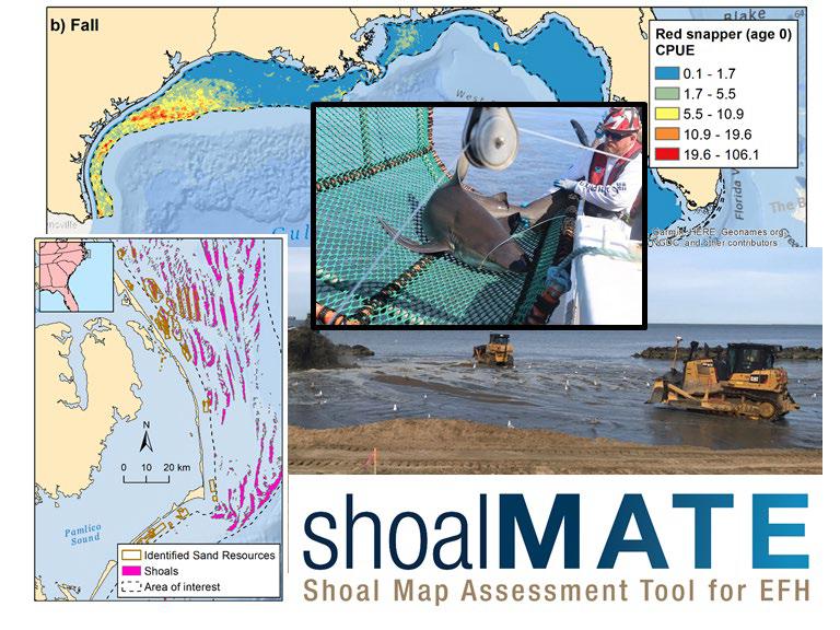 NOAA, BOEM Develop New Tool to Reduce Dredging Impacts to Essential Fish Habitat