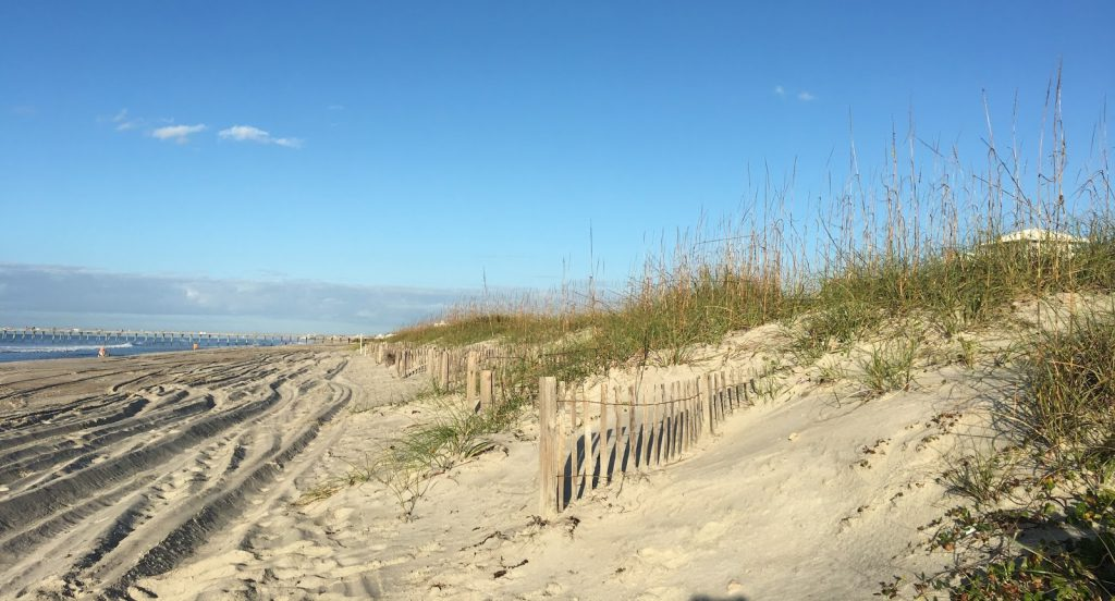 The Effect of Sand Fencing on the Structure of Natural Dune Systems