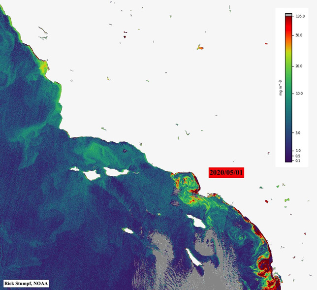 Satellite Image of chlorophyll concentration showing extent of bloom (red) off the coast of Southern California, May 5, 2020.