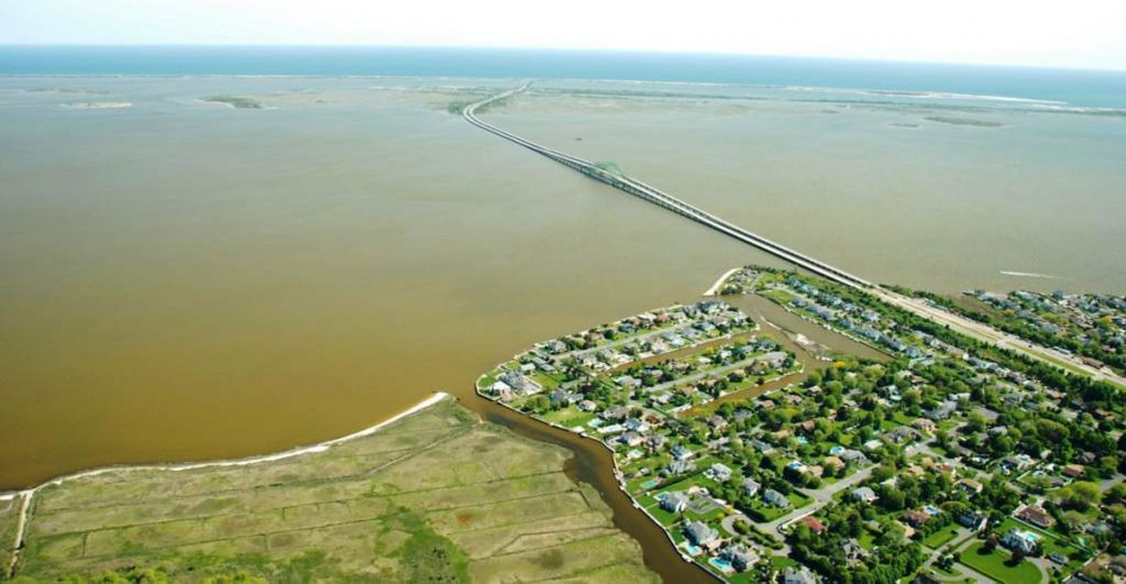 NCCOS Research Explores New Approaches to Decoding Brown Tide in Long Island Estuaries