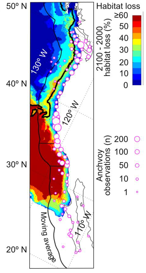 Oxygen Loss and Ecosystem Impacts in the California Current System