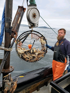 Research Enables Dungeness Crab Fishermen to Detect and Track Hypoxia