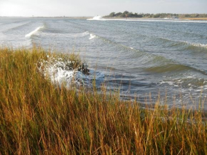 GIS Toolbox for Estimating Wave Attenuation by Coastal Marshes Developed by NOAA Funded Study