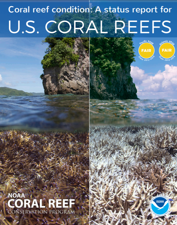 New Report Evaluates Health of U.S. Coral Reefs