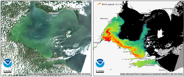 Working Group Releases Progress Report on Harmful Algal Blooms and Hypoxia in Great Lakes