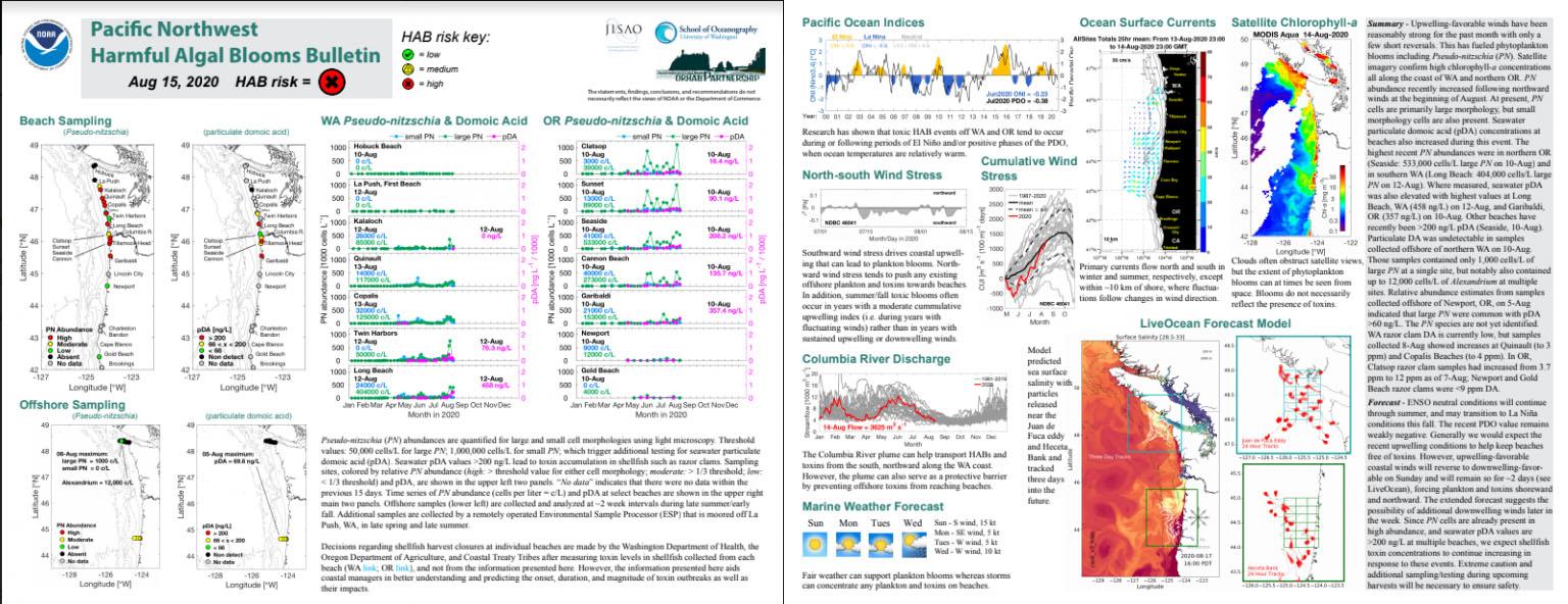 Example of Pacific Northwest Harmful Algal Bloom Bulletin.Example of Pacific Northwest Harmful Algal Bloom Bulletin.