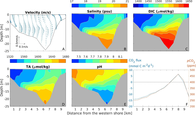Climate-induced Wind Upwelling Could Further Acidify Chesapeake Bay
