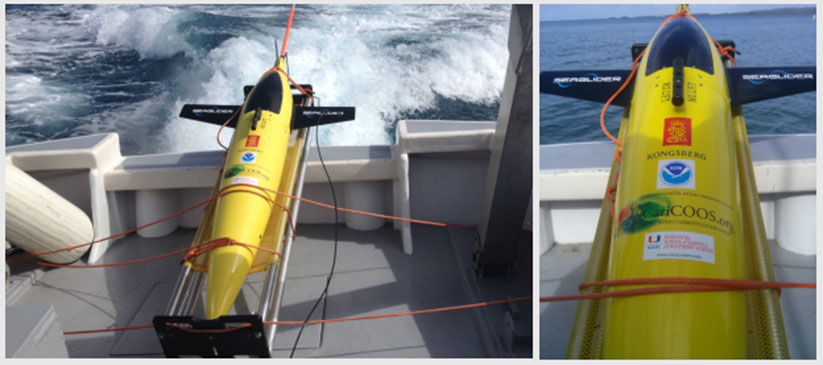 Water property data collected by AOML's autonomous underwater vehicles (shown here) could enhance NCCOS's habitat characterization efforts.