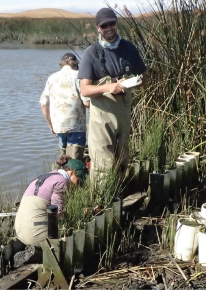 Story Map Highlights Marsh Vulnerability in San Francisco Bay-Delta Estuary