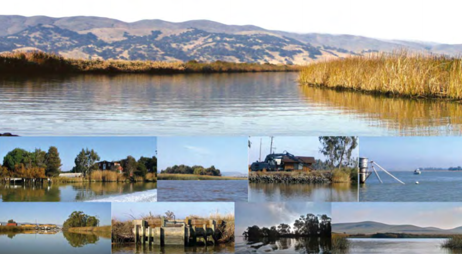 Management of Wetland Impoundments for Fish, Mosquitos and Waterfowl Should also Consider Plant Diversity