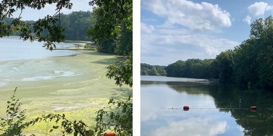 Lake Newport, Ohio, before and after nanobubble ozone treatment.