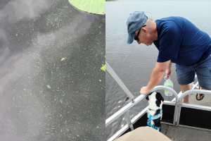 Enabled by NCCOS Response and Training, SC Responds to Cyanobacterial Bloom in Drinking Water Reservoir