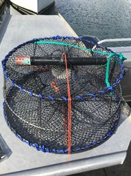 Building Partnerships to Track Hypoxia in Marine Ecosystems