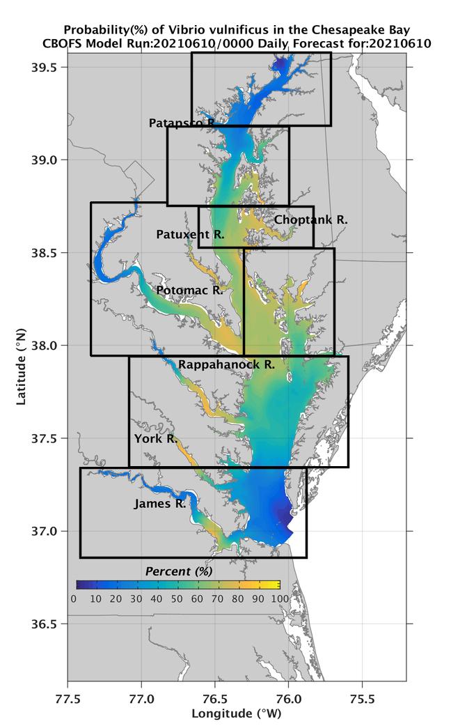 NOAA Forecast Predicts Occurrence of Pathogenic Vibrio Bacteria in Chesapeake Bay