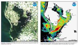NCCOS Expands Monitoring of More Lakes, Coastal Bays and Estuaries for HABs