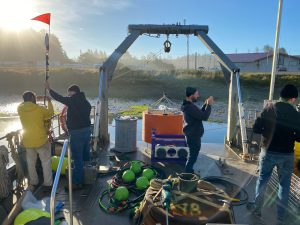 Long Term Research on the HAB Toxin Domoic Acid In Pacific Northwest to Continue